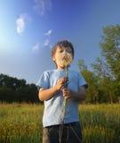 Piękno chłopiec z dandelion Zdjęcie Stock