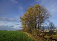 Piękno czeska wieś Zdjęcie Royalty Free