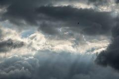 Piękno deszczu dzień zdjęcia stock