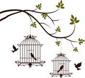 Piękno drzewna sylwetka z ptaków latać i ptak w klatce Zdjęcie Stock