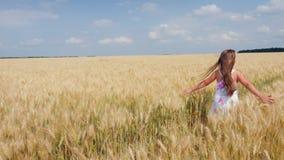 Piękno dziewczyny bieg na żółtym pszenicznym polu zbiory