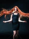 Piękno dziewczyny imbirowy portret Zdrowy Długi Czerwony Włosy Piękny yo obraz stock