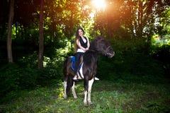Piękno jeździec Zdjęcie Stock