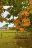 Piękno jesień sezon Obraz Stock