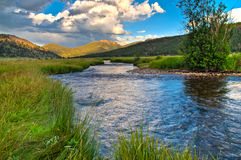 Piękno Kolorado obrazy stock