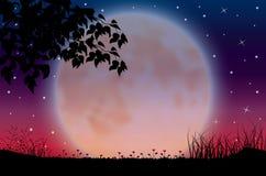 Piękno księżyc w naturze, Wektorowy ilustracja krajobraz Obrazy Royalty Free