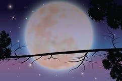 Piękno księżyc w naturze, Wektorowy ilustracja krajobraz Fotografia Royalty Free