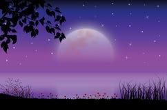 Piękno księżyc w naturze, Wektorowy ilustracja krajobraz Obraz Royalty Free