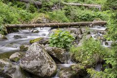 Piękno natura w Sistani Halny strumień w Tatras Obraz Royalty Free