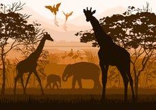 Piękno natura z dzikimi zwierzętami (żyrafa, słoń, flaming, royalty ilustracja