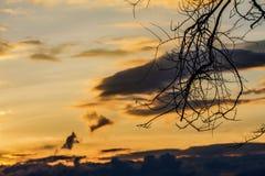 Piękno niebo przy zmierzchem z sylwetką jako tło Obraz Royalty Free