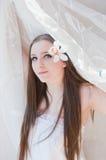 piękno panna młoda Obrazy Stock