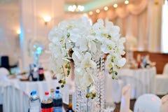 Piękno panna młoda w bridal todze z koronkową przesłoną rzuca ślubnego bukiet indoors Zdjęcia Royalty Free