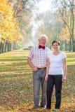 Piękno park podczas jesień czasu Obraz Royalty Free