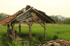 Piękno rolnik buda fotografia stock