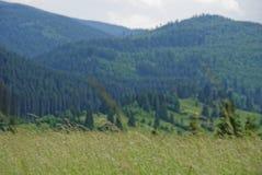 Piękno Rumunia zdjęcie stock