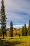 Piękno widok w górach Altai Pasmo górskie w północnych zachodach Altai góry w Altai terytorium Rosja, Obraz Stock