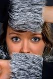 piękno zima fotografia stock
