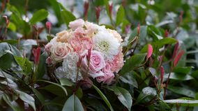 Piękny ślubny bukiet na tle ulistnienie zbiory
