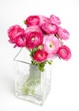 Piękny ślubny butet Ranunculus Fotografia Royalty Free
