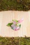 Piękny ślubu kwiatu bonbonniere Zdjęcia Stock