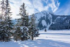 Piękny śnieżny krajobraz blisko Gnade Alm, Austria fotografia stock