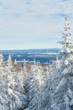Piękny śnieżny krajobraz w Quebec, Kanada obraz stock