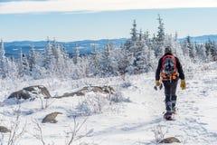 Piękny śnieżny krajobraz w Quebec, Kanada fotografia royalty free