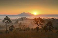 Piękny świeży punkt widzenia Dzwonił Salang Luang, Tajlandia fotografia royalty free