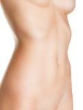 Piękny żeński ciało Obrazy Royalty Free