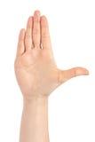 Piękny żeński ręki uwagi gest pojedynczy białe tło Zdjęcia Royalty Free