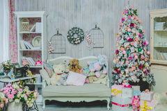 Piękny żywy pokój dekorujący dla bożych narodzeń zdjęcie royalty free
