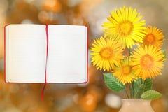 Piękny żywy stokrotki lub chamomile bukieta bukiet w porcelany wazie z rozpieczętowaną nutową książką z pustym miejscem dla twój  Fotografia Stock