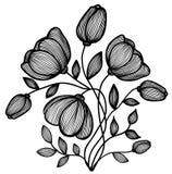Piękny abstrakcjonistyczny czarno biały kwiat linie. Przerzedżę odizolowywał na bielu Obraz Royalty Free
