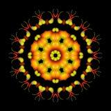 Piękny abstrakcjonistyczny pomarańczowy mandala ornament na czarnym odosobnionym bac Zdjęcia Stock