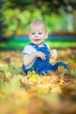 piękny błękitnooki dziecko w spadku na dywanie żółci czerwoni liście Obraz Royalty Free