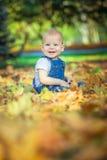 piękny błękitnooki dziecko w spadku na dywanie żółci czerwoni liście Zdjęcie Royalty Free