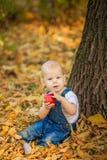 piękny błękitnooki dziecko w spadku na dywanie żółci czerwoni liście Obrazy Royalty Free