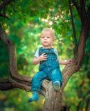 piękny błękitnooki dziecko w spadku na dywanie żółci czerwoni liście Fotografia Stock