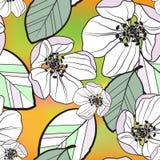 Piękny bezszwowy abstrakta wzór bzu jabłko kwitnie i barwiący liście na zieleni gradientowym tle, wektor royalty ilustracja