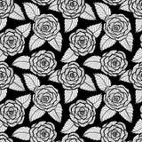 Piękny bezszwowy czarny i biały wzór w różach i liść koronce Pociągany ręcznie konturowe linie i uderzenia Zdjęcie Stock
