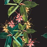 Piękny bezszwowy kwiecisty deseniowy tło z tropikalnym zmrokiem i jaskrawym ficus elastica, palma opuszcza i protea kwitnie royalty ilustracja