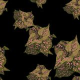 Piękny bezszwowy kwiecisty deseniowy tło z tropikalnymi roślinami z różowymi punktami ilustracja wektor