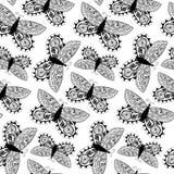 Piękny bezszwowy tło motyle Zdjęcie Royalty Free