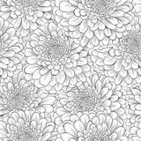 Piękny bezszwowy tło z monochromatycznymi czarny i biały kwiatami Obrazy Royalty Free