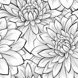 Piękny bezszwowy tło z monochromatycznymi czarny i biały kwiatami Zdjęcie Royalty Free