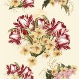 Piękny bezszwowy tapeta wzór z tulipanowymi kwiatami Obraz Stock