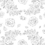 Piękny bezszwowy wzór róże Zdjęcia Royalty Free