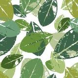 Piękny bezszwowy wzór z liśćmi Obraz Stock