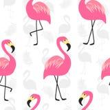 Piękny bezszwowy wzór z różowym flamingiem Fotografia Royalty Free